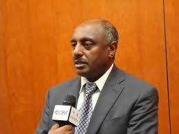 Berhan Hailu - Minister of Justice