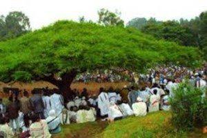 Photo - Irreecha, Thanksgiving holiday of the Oromo people
