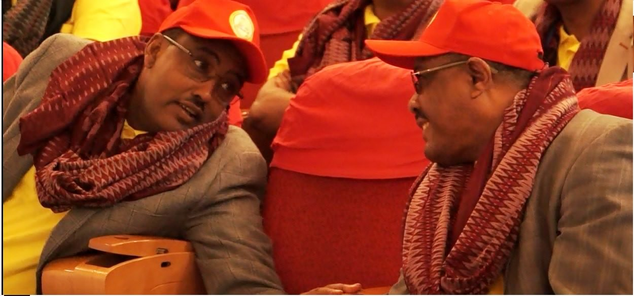 Photo - PM Hailemariam Desalegn (right) and DPM Demeke Mekonen (left) at EPRDF Congress, Mekelle city, August 2015 [Image credit: Awramba times]