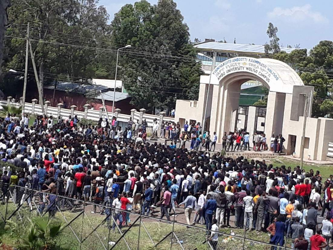 Photo - protest in Woliso city