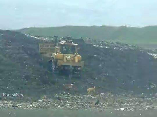 Photo - Addis Ababa Sendafa Landfill, August 2016