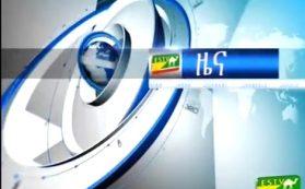 Logo - Ethio-Somali television