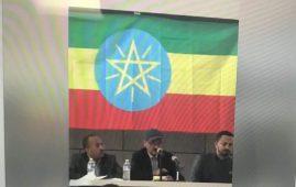 Photo - Tigrayans meeting in Washington DC, Jan 27, 2018