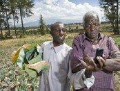 Photo-Kenyan-mobile-users.jpg