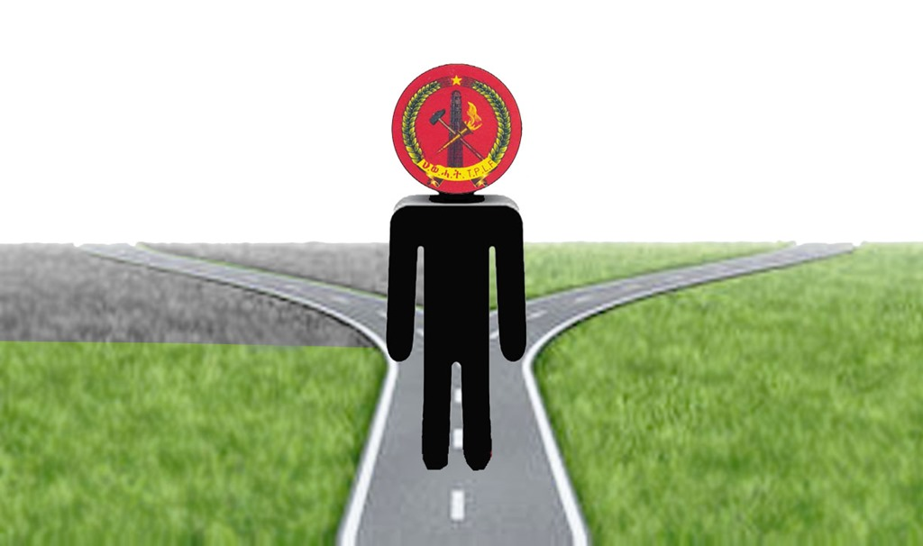 Image - TPLF at cross roads