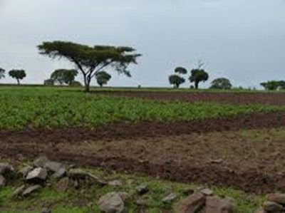 Photo - Rural Ethiopia