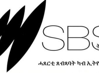 Image - SBS May 28 Ethiopian news summary