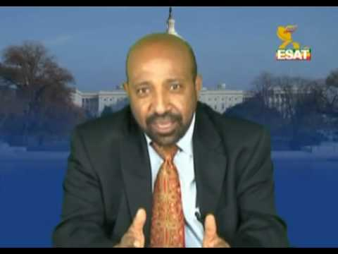 Berhanu Nega - Chairman of Ginbot 7 party
