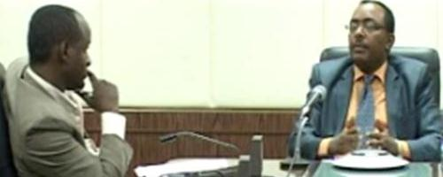 Minister Redwan Husien sits with Horn Affairs' Daniel Berhane
