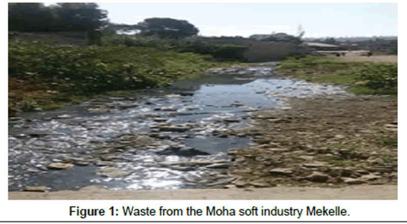 Photo - Waste from the Moha soft industry Mekelle.